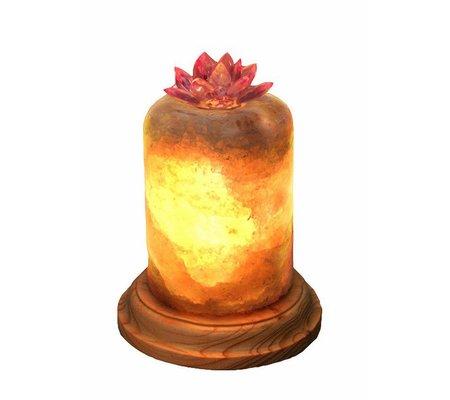 """Фото Соляная лампа """"Лотос""""(lotos1614) по цене 250 грн. Торговая марка Другие производители. Соляные лампы."""