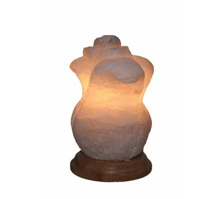 "Фото Соляная лампа ""Роза"" (4 кг)(SOL-2034) по цене 545 грн. Торговая марка Артемовск (Украина). Соляные лампы."